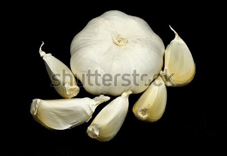 Garlic heads and Cloves Stock photo © ribeiroantonio
