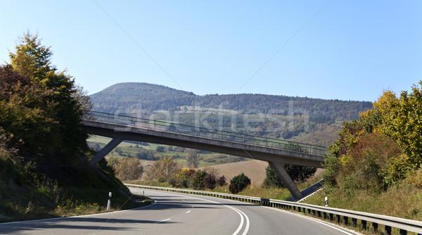 Germany Country Road Stock photo © ribeiroantonio