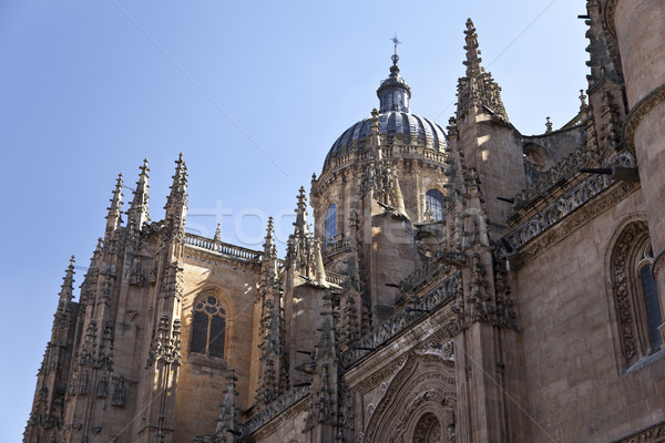 Salamanca New Cathedral (Catedral Nueva) Stock photo © ribeiroantonio