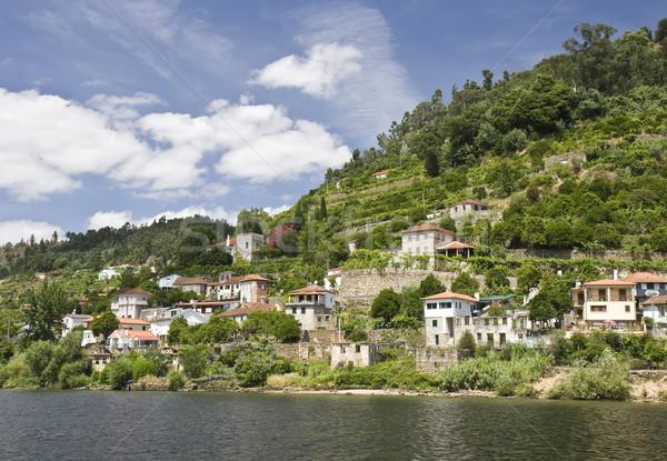 Banks of the Douro River Stock photo © ribeiroantonio