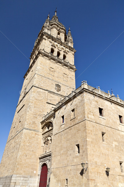Salamanca Old Cathedral Stock photo © ribeiroantonio