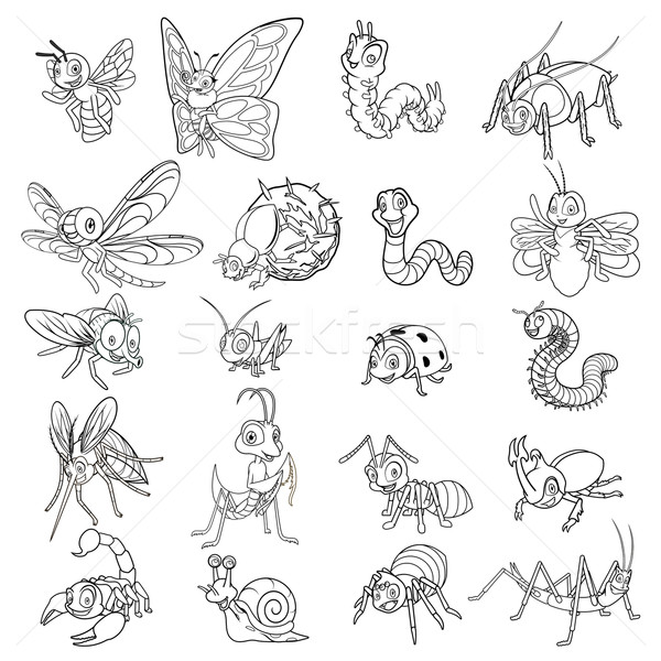 набор насекомое линия искусства бабочка Сток-фото © ridjam