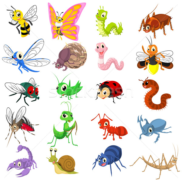 Ingesteld insect vlinder ontwerp bee Stockfoto © ridjam