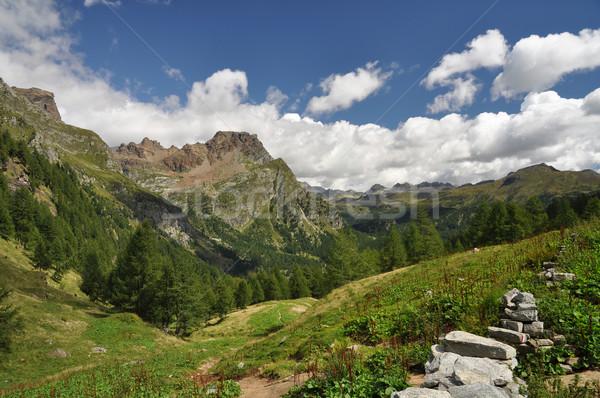 высокий горные пейзаж Альпы трава Сток-фото © rmarinello