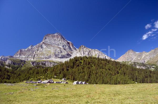 альпийский лет пейзаж итальянский природного парка Сток-фото © rmarinello