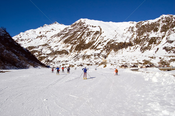 cross-country ski park Stock photo © rmarinello