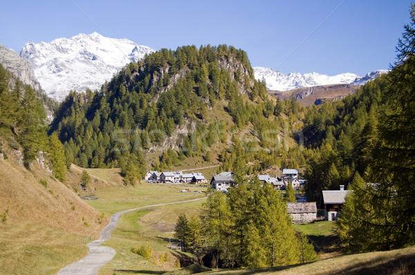 альпийский пейзаж природного парка Альпы природы Сток-фото © rmarinello