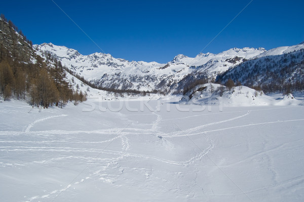 icy winter alpine lake Stock photo © rmarinello