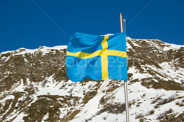 Swedish Flag Stock photo © rmarinello