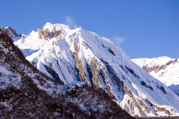 windy snowy peak Stock photo © rmarinello