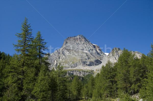 горные пейзаж мнение природного рай итальянский Сток-фото © rmarinello