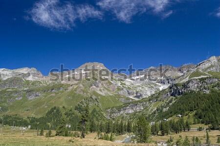 Alpine summer landscape Stock photo © rmarinello
