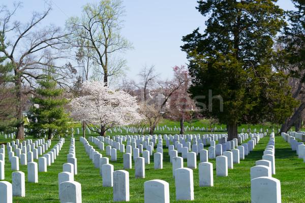 Gravestones at the Arlington Cemetery  Stock photo © rmbarricarte