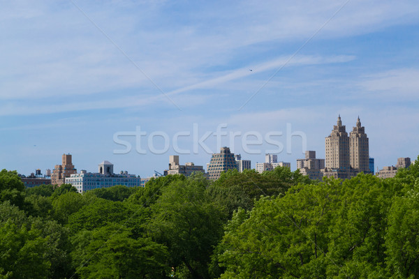 Upper West Side from the Metropolitan museum Stock photo © rmbarricarte