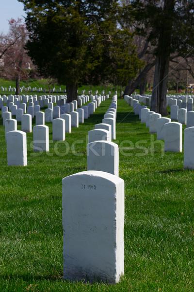Lines of gravestones Stock photo © rmbarricarte