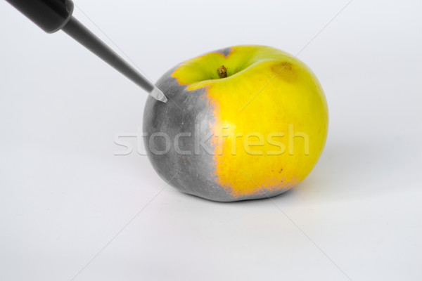 Degrading apples Stock photo © rmbarricarte