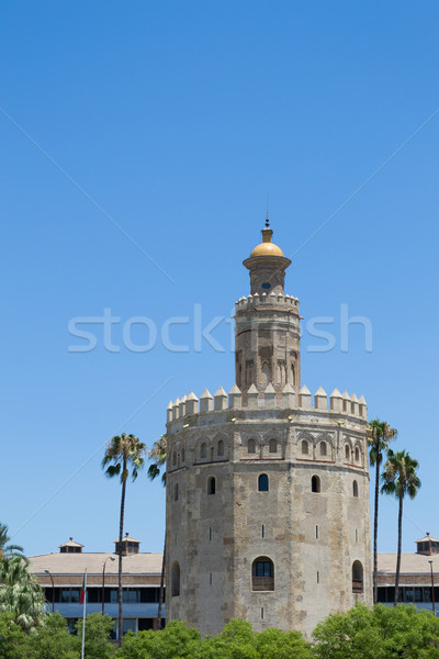 Gold tower within palmtrees Stock photo © rmbarricarte