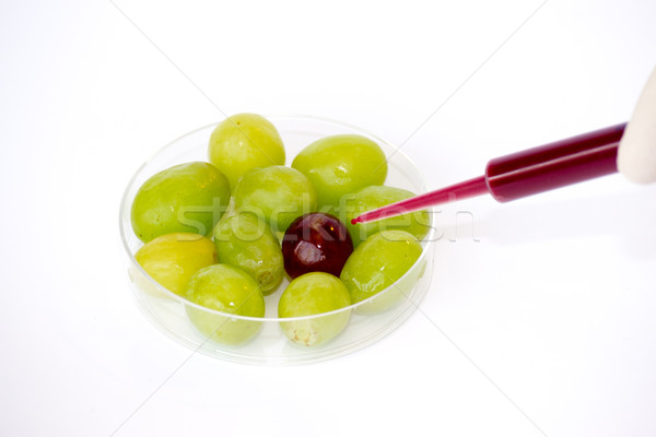 Injecting grapes Stock photo © rmbarricarte