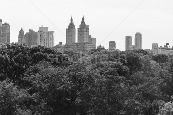 Black and white San Remo from the MET Stock photo © rmbarricarte