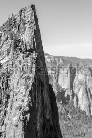 Zwart wit beroemd seizoen show spel steen Stockfoto © rmbarricarte