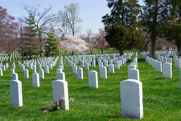 Arlington Cemetery graves Stock photo © rmbarricarte