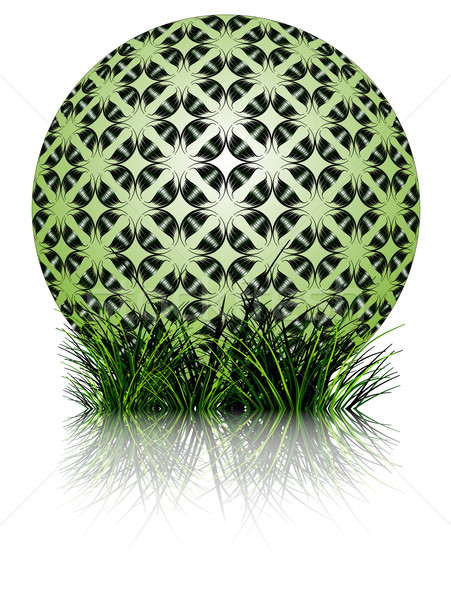 green bubble and grass reflected Stock photo © robertosch