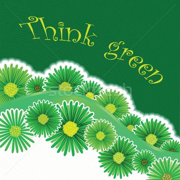 green background Stock photo © robertosch