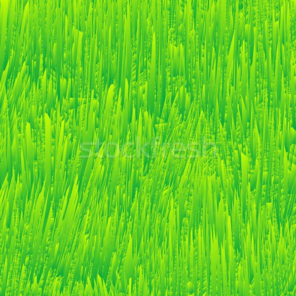 fresh grass texture Stock photo © robertosch