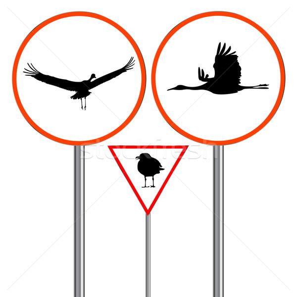 птиц дорожный знак движения признаков изолированный белый Сток-фото © robertosch