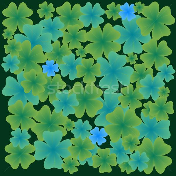 shamrock leaves pattern Stock photo © robertosch