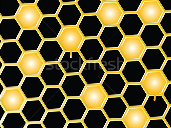 Méz fésű absztrakt vektor művészet illusztráció Stock fotó © robertosch