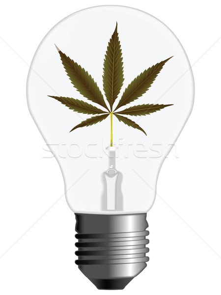 cannabis energy Stock photo © robertosch