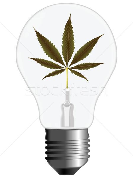 Cannabis energia villanykörte fehér absztrakt vektor Stock fotó © robertosch