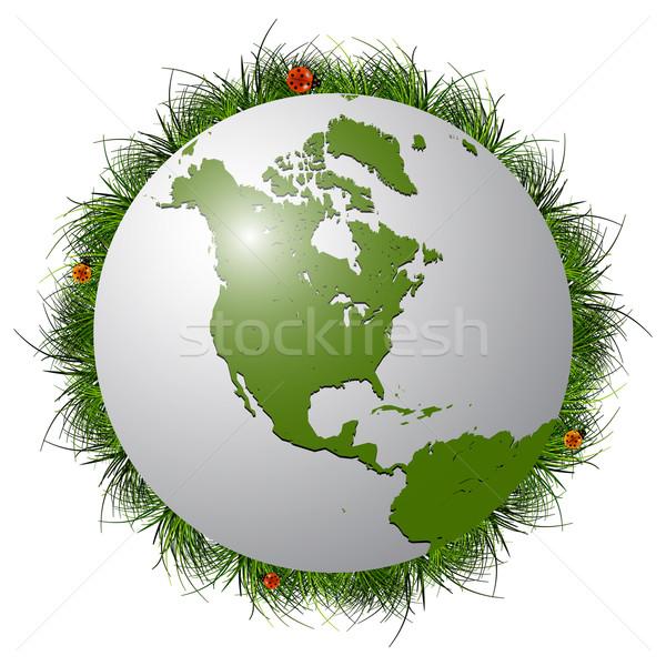 Terra globo grama joaninhas branco abstrato Foto stock © robertosch