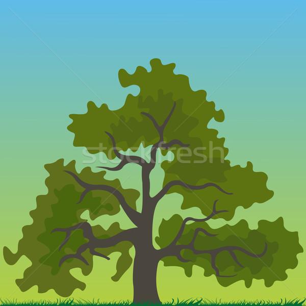 дерево Cartoon аннотация вектора искусства иллюстрация Сток-фото © robertosch