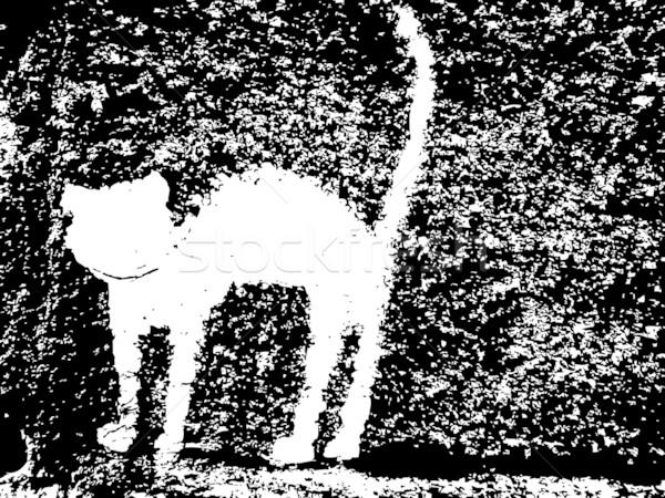 штукатурка кошки вектора искусства иллюстрация больше Сток-фото © robertosch