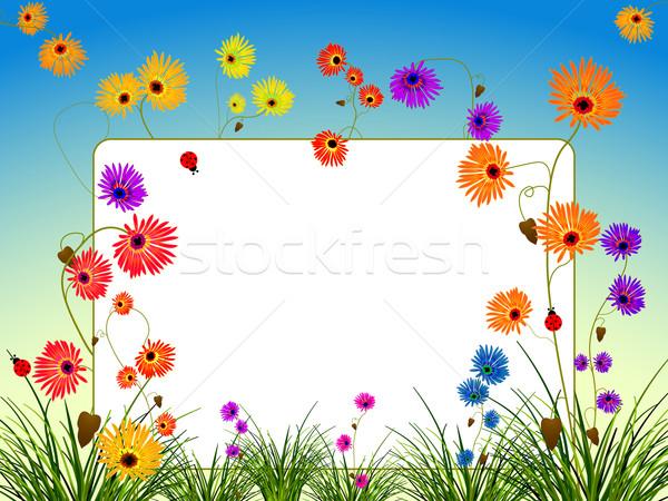 пусто Billboard цветы трава аннотация вектора Сток-фото © robertosch