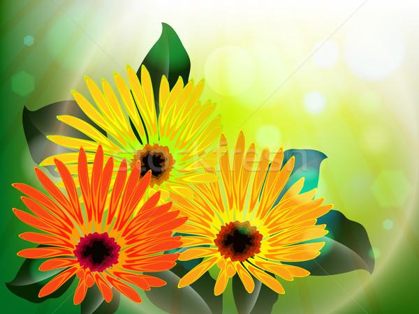 Foto stock: Flores · luz · abstrato · vetor · arte · ilustração
