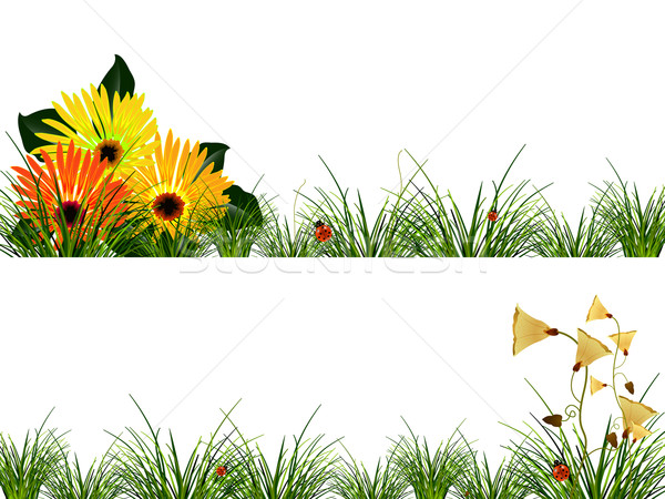 Fleurs herbe coccinelles résumé vecteur art Photo stock © robertosch