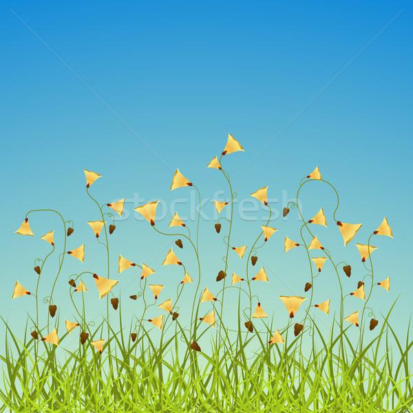 Tavaszi virágok mező absztrakt vektor művészet illusztráció Stock fotó © robertosch