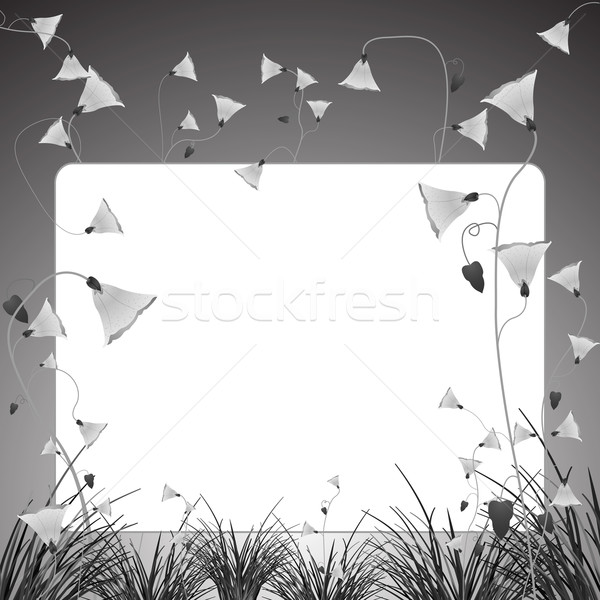 monochromatic flowers and grass banner Stock photo © robertosch