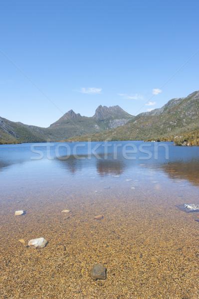 Kołyska górskich parku tasmania sceniczny krajobraz Zdjęcia stock © roboriginal