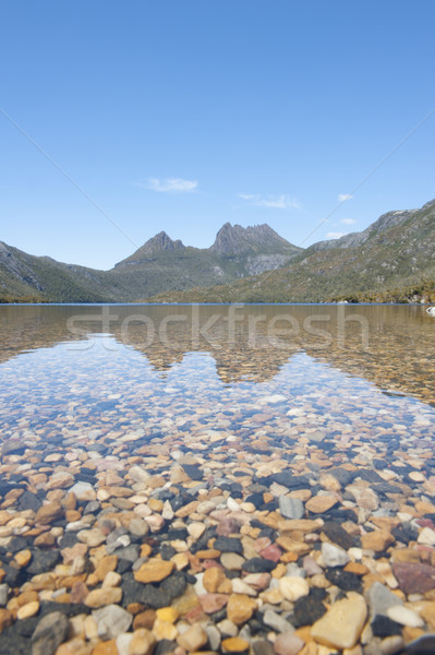 Cradle Mountain and Dove Lake Tasmania Australia Stock photo © roboriginal