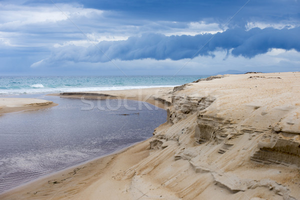Wild weather storm cloud ocean beach dunes Stock photo © roboriginal