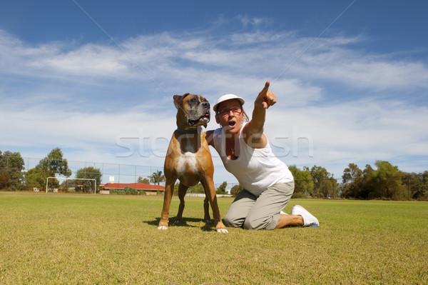 女性 ボクサー 牛 犬 所有者 友達 ストックフォト © roboriginal