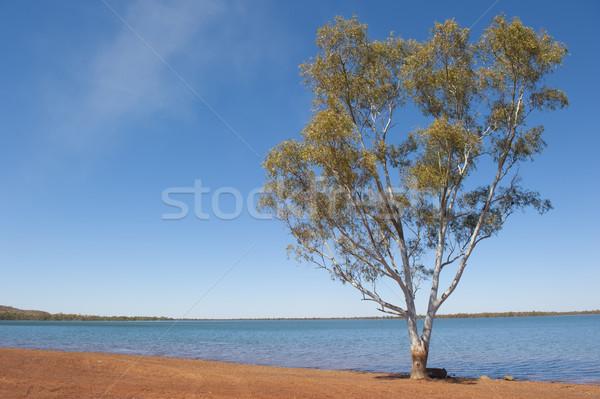 Waterhole Australian outback Stock photo © roboriginal