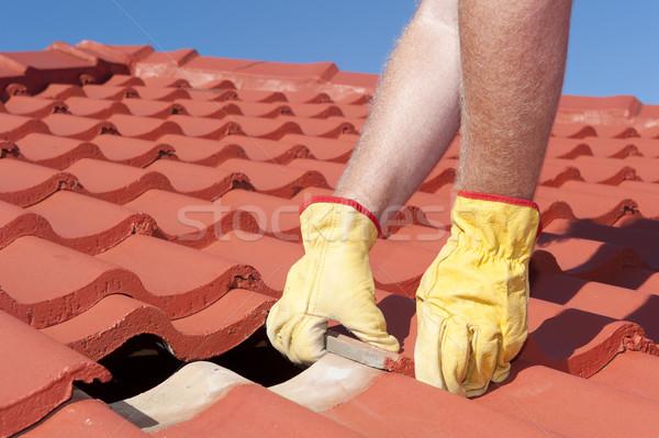 Pracownika dachu płytek domu naprawy Zdjęcia stock © roboriginal