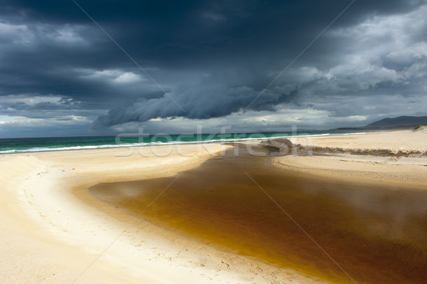 Windy weather storm clouds ocean beach Stock photo © roboriginal