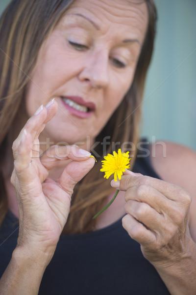Mature Woman plugging petal of yellow flower Stock photo © roboriginal