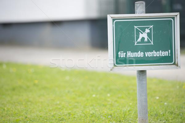 Figyelmeztető jel kutyák tilos gyep copy space elmosódott Stock fotó © roboriginal